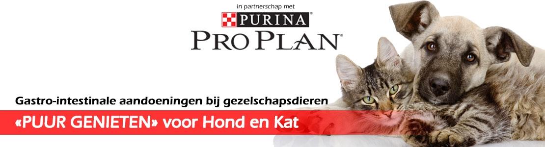 """Gastro-intestinale aandoeningen bij gezelschapsdieren  :  """"PUUR GENIETEN"""" voor Hond en Kat (Gent)"""